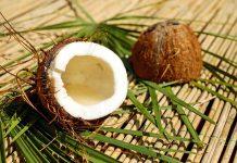 coco cortado con palmas
