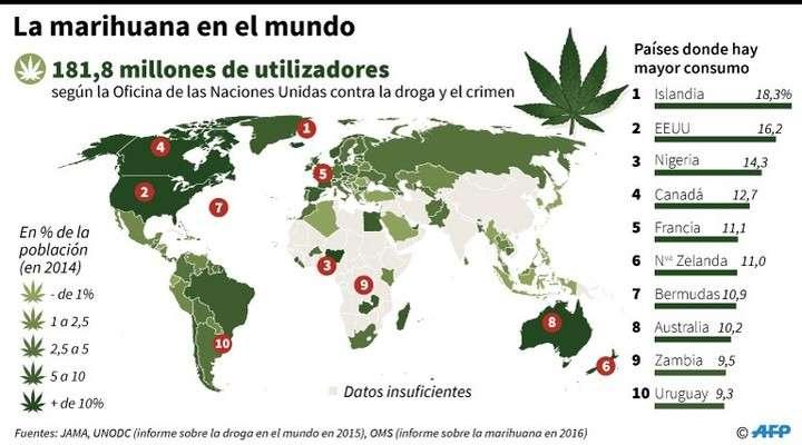 Resultado de imagen de marihuana en canada